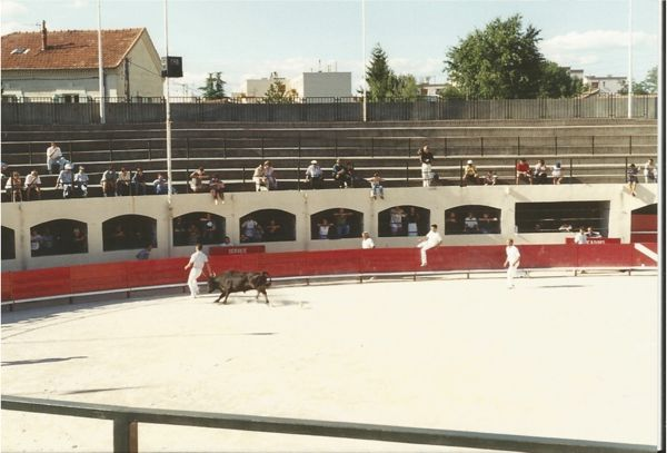 Camargue bull fight. Arles, Provence France