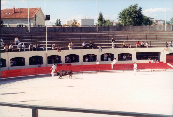 Course Camarguaise in the Arles Amphitheatre, France.