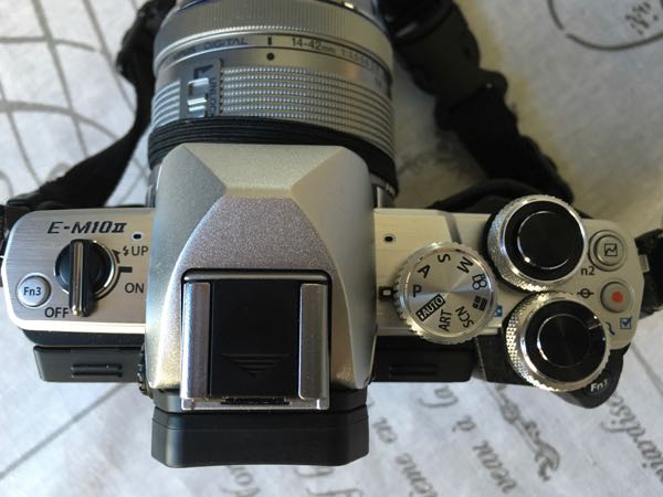Olympus OMD EM10-MarkII Camera