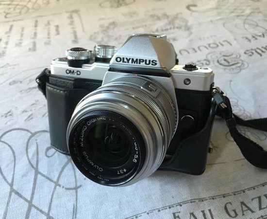 Mirrorless camera for travel-Olympus OMD EM10-MarkII