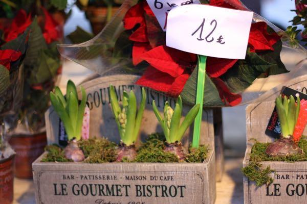 Flowers in Paris France Market Career Mistakes