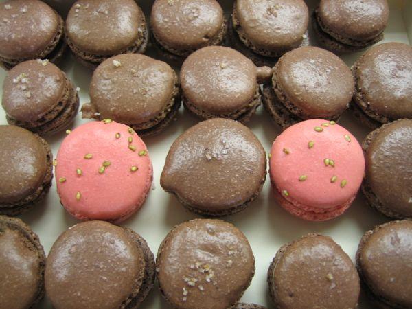 Macarons Made At Cordon Bleu, Paris France Bucket List