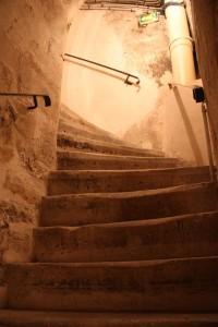 Les Caves du Louvre, Paris Wine Experience