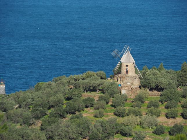 Collioure: Moulin de la Cortina