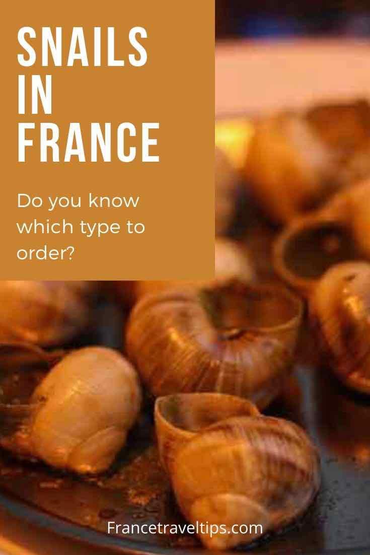 Snails in France (Pinterest)
