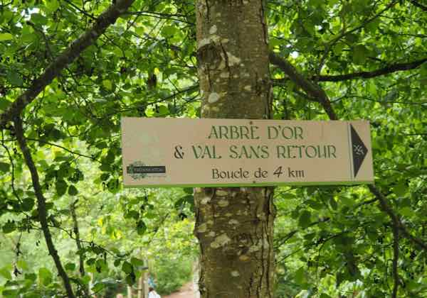 Entrance to Le Val Sans Retour at Broceliande