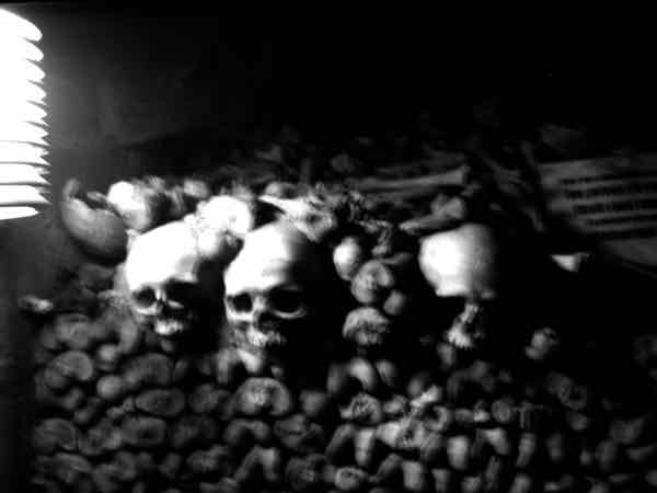 Skulls and bones piled up neatly in the Paris Catacombs (J. Chung)