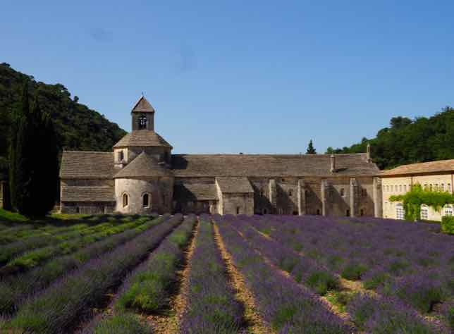 Lavender at the Abbey de Senanque (J. Chung)