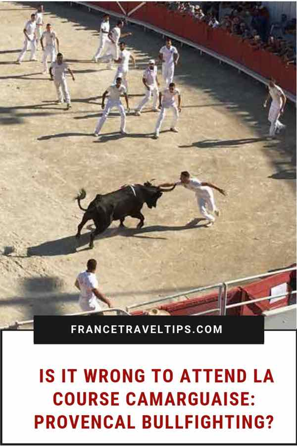 Is it wrong to attend La Course Camarguaise-Provencal Bullfighting