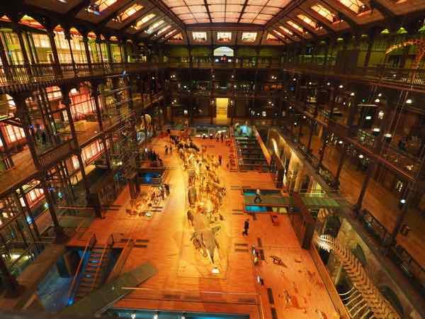 Museum of Natural History, Paris (J. Chung)
