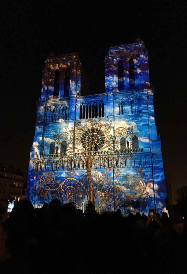 Dame de Coeur-sound and light show at Notre-Dame (J. Chung)