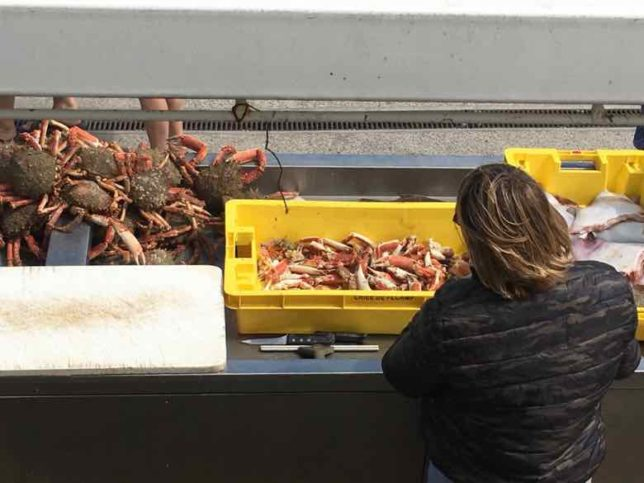 Crabs for sale in Veules-les-Roses (J. Chung)