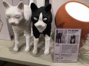 Cats at Fleux, Paris (J. Chung)