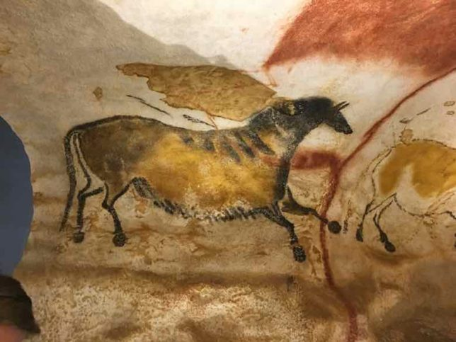 Reproduction of a Lascaux painting (J. Chung)