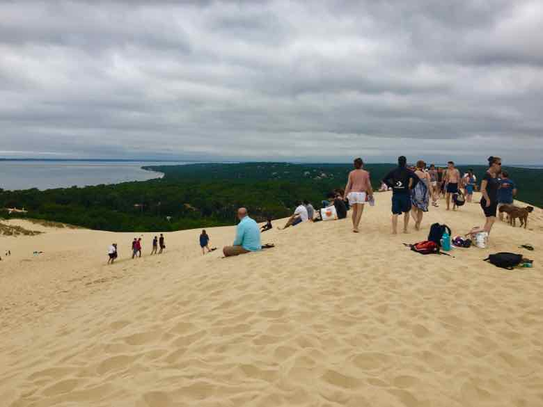 Top of Dune du Pilat (J. Chung)