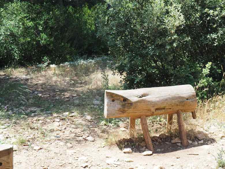 Bench at Foret des Cedres (J. Chung)