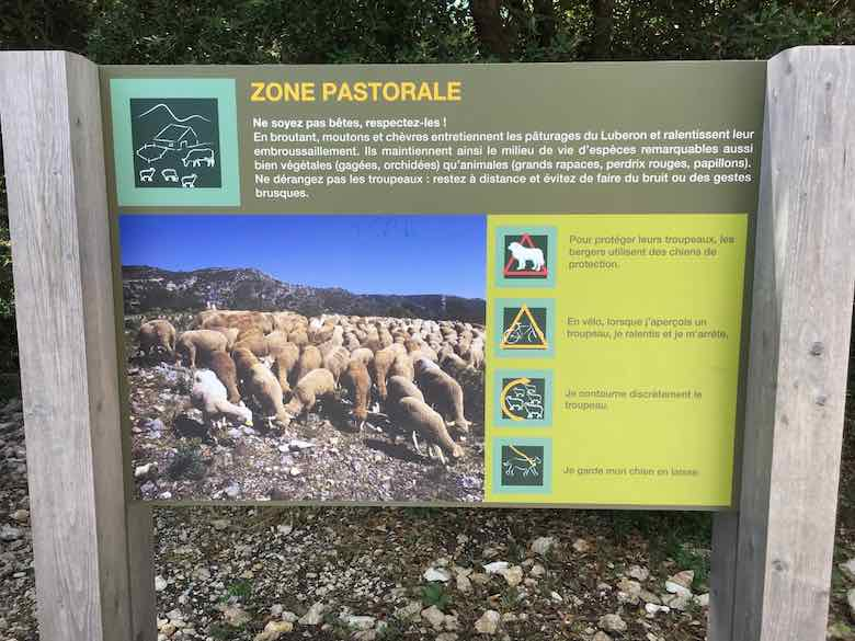 Zone Pastorale sign-Foret des Cedres (J. Chung)