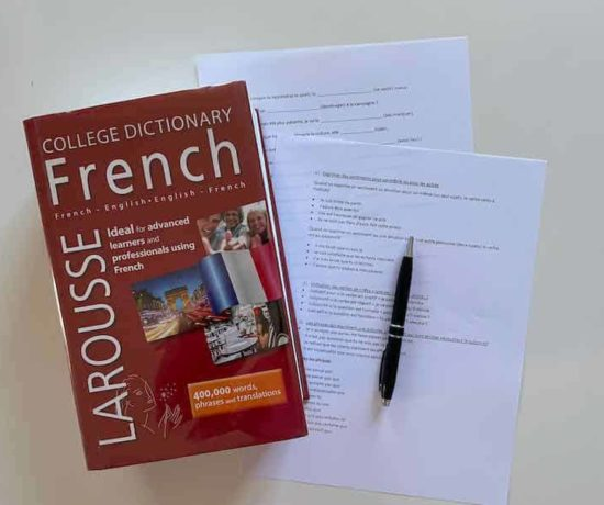 French dictionary and worksheets for online learning